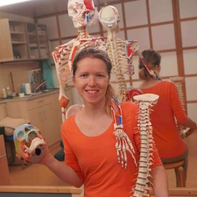 Via Vital Adventkalender Tür 17: Unsere Knochenmodelle